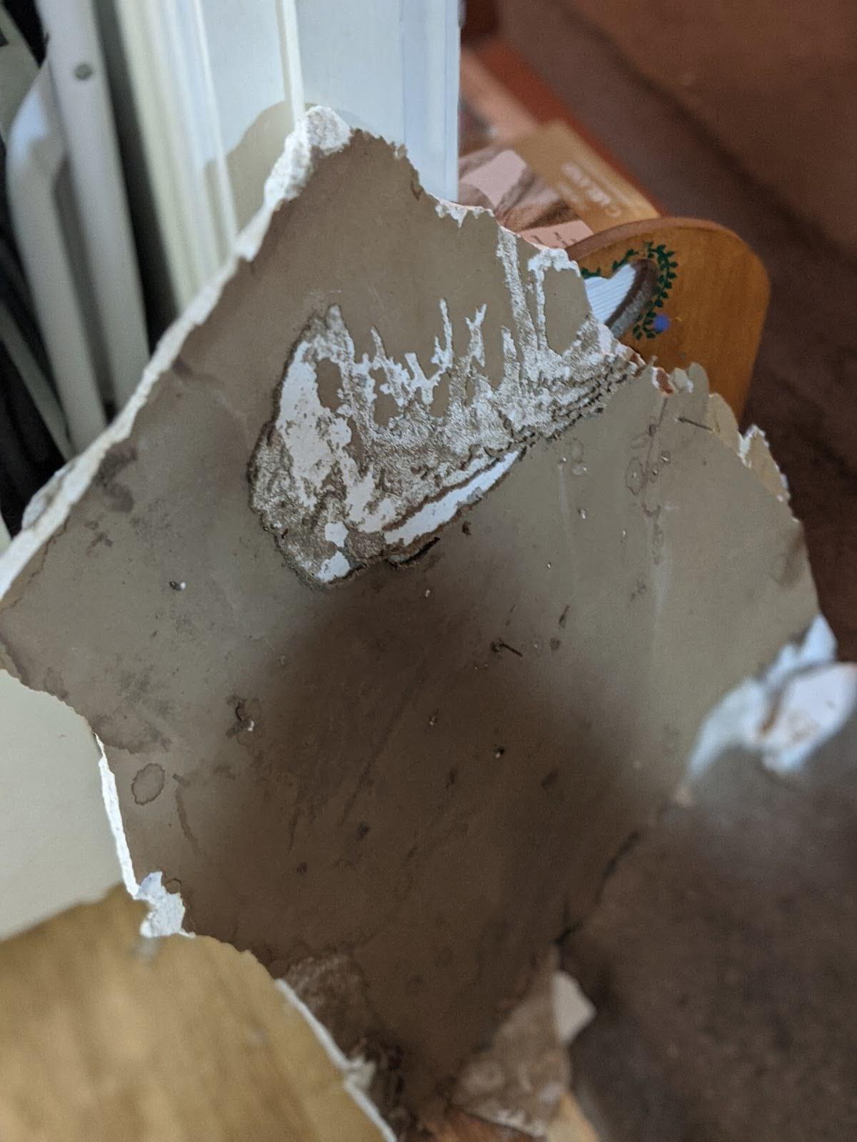 Fallen sheetrock size