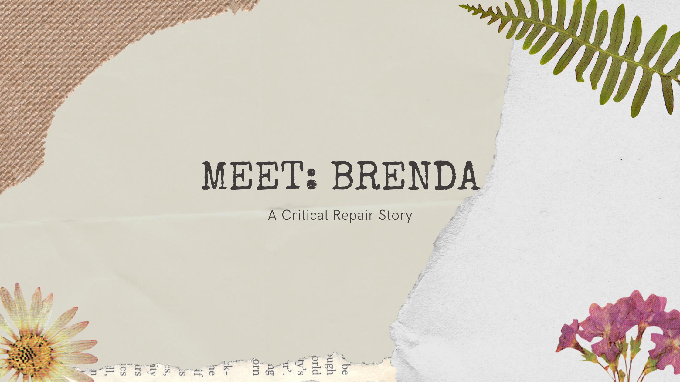 Meet: Brenda