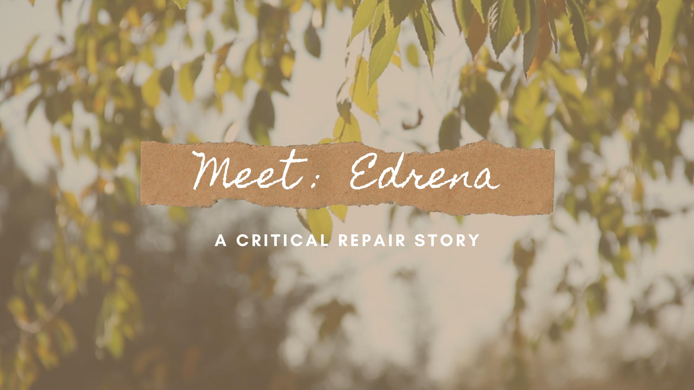 Meet: Edrena